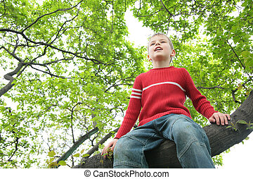 garçon, assied, arbre
