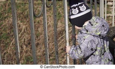 garçon, barrière, derrière