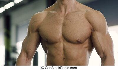 garçon, biceps, barres disques, portrait, gym., formation, confiant, séduisant, confection, exercices, pendant
