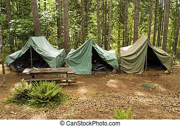 garçon, camp, scout, tentes
