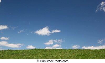 garçon, courses, herbe, tissu, arc-en-ciel