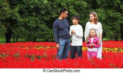 garçon, famille, parc, séjour, girl, fleurs, parler