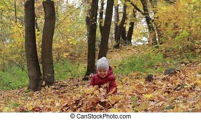 garçon, feuilles, parc, automne, enfantqui commence à marcher, jouer