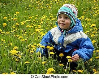 garçon, fleurs, pré