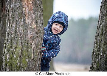 garçon, peu, adorable, peau, arbre, parc, derrière, forest., automne, vert, coffre, chercher, jouer, dissimulation