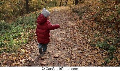 garçon, peu, coloré, parc, automne, courant, enfantqui commence à marcher