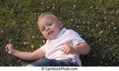 garçon, peu, mignon, pelouse, jeune, grass., dehors, amusement, portrait, avoir, mensonge