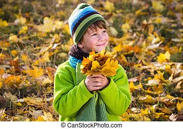 garçon, peu, parc, feuilles, jaune
