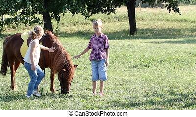 garçon, peu, poney, cheval, girl