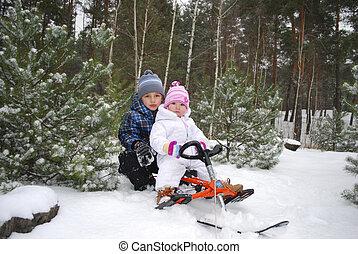 garçon, peu, séance, forêt, sled., girl