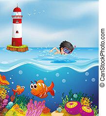 garçon, phare, plage, natation