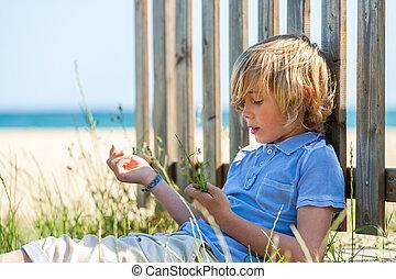 garçon, plage., barrière, séance, bois, nex