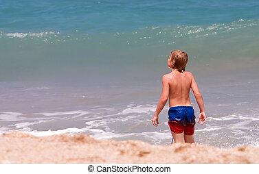 garçon, plage, explorer
