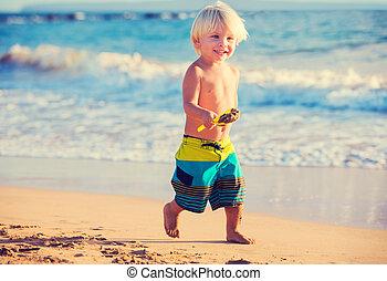 garçon, plage, jeune, jouer