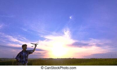 garçon, sien, silhouette, avions, contre, courant, coucher soleil