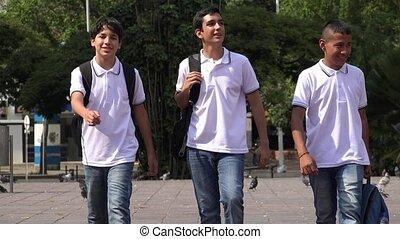 garçons adolescence, marche, école