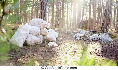 Garbage bags in the forest