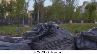 Garbage bags lying on the ground after evening cleaning in...