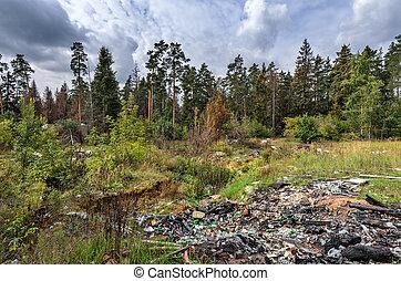 Garbage dump in forest - Environmental pollution - garbage...