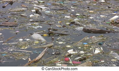 Garbage floating in the lake. - Bits of garbage and plastic...