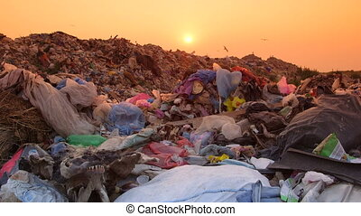 Garbage Pollution - Garbage dump at sunset
