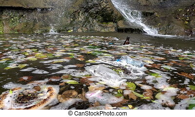 Garbage Pollution Waste on Dirty Lake Water