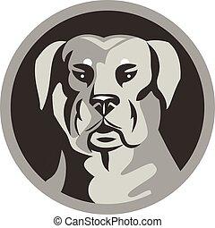 garde, tête, noir, rottweiler, cercle, chien, blanc