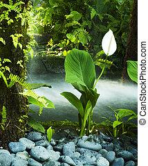 garden., 東洋人