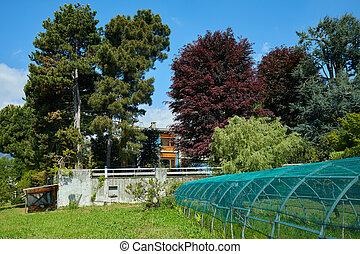 Garden and greenhouse in a sunny day, Italy