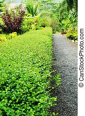 garden., anglaise