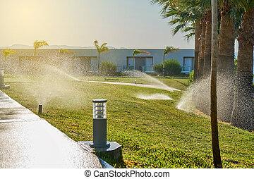 Garden automatic irrigation system. Smarter lawn sprinkler system