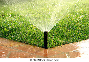 Garden automatic irrigation system watering lawn in a sunny...