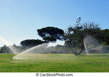 Garden automatic irrigation
