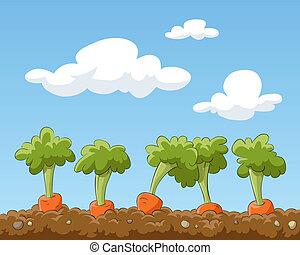 Cartoon garden bed with carrots, vector illustration