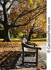 Garden-bench in park in fall