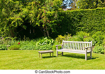 Wooden bench in a summer garden