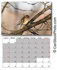 garden birds calendar  march 2016