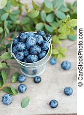 garden., blaubeeren, organische , heidelbeere, hölzern, blätter, essen., roh, hintergrund, frisch