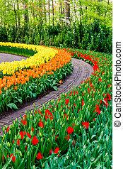 garden., bonito, flor, spring., jardim, parque, flores