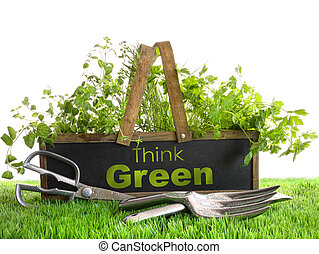 Garden box with assortment of herbs and tools - Wood garden...