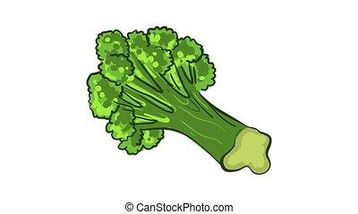 Garden broccoli icon animation best object on white background