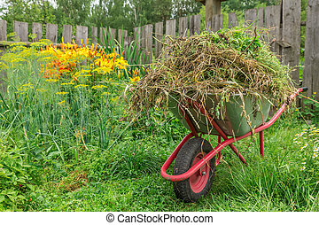 Garden cart in the kitchen garden