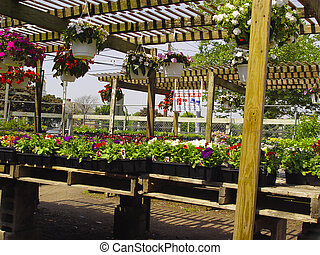 Garden Center 3 - Photo of Plants and Flowers at a Garden...
