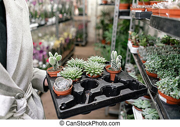Garden center and wholesale supplier concept. Woman holding a box with plants in her hands. Buying plants for home.
