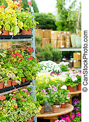 Garden centre green house with potted flowers - Garden...
