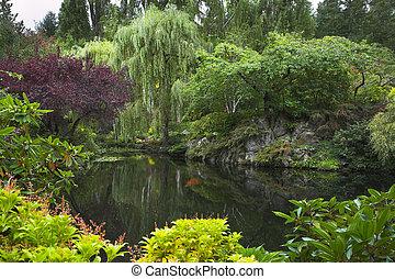 garden., charca