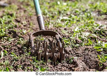 garden., concepto, estrella, primavera, trabajo, tierra, entregue cultivador, jardinería, mala hierba
