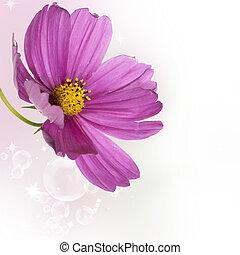Garden decorative dark pink flower
