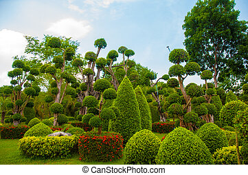 Garden - Exotic botanical garden in the North of Thailand
