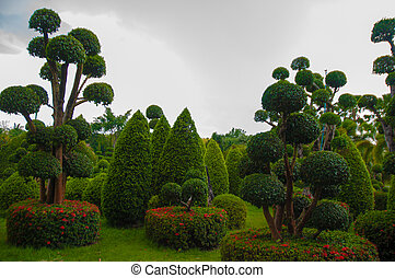 Exotic botanical garden in the North of Thailand